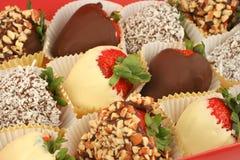 Schokolade tauchte Erdbeeren ein Lizenzfreie Stockfotografie