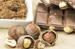Schokolade und Haselnüsse lizenzfreie stockfotografie