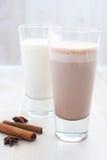 Schokolade und regelmäßige Milch Lizenzfreie Stockfotografie