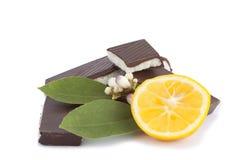 Schokolade und Zitrone lizenzfreie stockfotografie