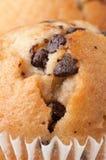 Schokoladen-Chip-Muffin lizenzfreies stockbild