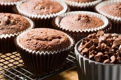 Schokoladen-Chip-Muffins Stockfotografie