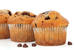 Schokoladen-Chip-Muffins Stockbild