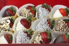 Schokoladen-Erdbeeren Lizenzfreie Stockfotos