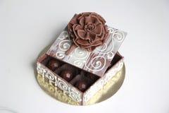 Schokoladen-Kasten mit Schokoladen-Trüffeln Lizenzfreie Stockfotografie