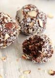 Schokoladen-Kokosnussbälle Lizenzfreies Stockbild