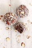 Schokoladen-Kokosnussbälle stockbilder