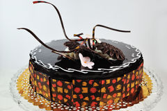 Schokoladen-Kuchen Lizenzfreie Stockfotografie