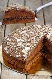 Schokoladen-Kuchen-Nahaufnahme-Scheibe geschnitten Stockfoto