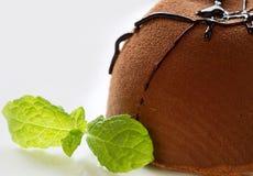 Schokoladen-Kuchen und Trüffel Lizenzfreies Stockbild