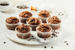Schokoladen-Muffin mit Schokoladensplittern stockfoto