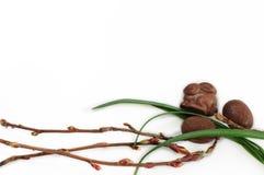 Schokoladen-Ostereier und Häschen - Hintergrund lokalisiert auf Weiß lizenzfreies stockbild