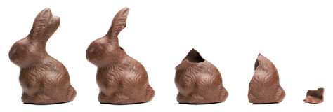 Schokoladen-Osterhasenessenreihenfolge Lizenzfreies Stockfoto