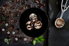 Schokoladen-Rum-Eiscreme stockfotografie