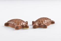 Schokoladen-Schildkröten Lizenzfreie Stockfotos