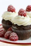 Schokoladen- und Himbeerekleine kuchen Lizenzfreies Stockbild