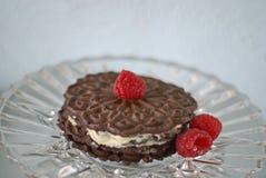 Schokoladen- und Himbeertörtchen Stockfotos