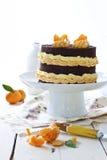 Schokoladen- und Mandarinekuchen Lizenzfreie Stockfotografie