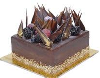 Schokoladen-Wald lizenzfreie stockfotografie