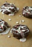 Schokoladen-Weihnachtsplätzchen Lizenzfreie Stockfotos