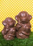Schokoladenaffe auf dem Gras Lizenzfreie Stockfotos