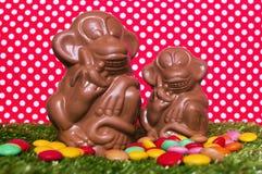 Schokoladenaffen auf dem Gras Lizenzfreie Stockfotos