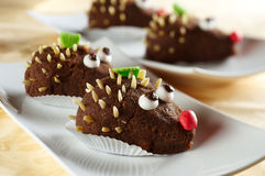 Schokoladenbiskuit Stockfotos