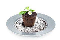 Schokoladenblumentopf mit einem Kuchen nach innen Stockfotografie