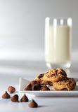 Schokoladenchip-Biskuit stockfotos