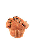 Schokoladenchip-Muffin stockfoto