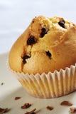 Schokoladenchip-Muffin stockbilder