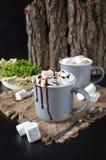 Schokoladenerschütterung mit Bratenfettsoße und -eibischen Stockfoto