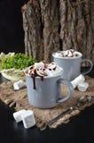 Schokoladenerschütterung mit Bratenfettsoße und -eibischen Stockbild