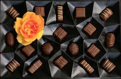Schokoladenkasten mit einer Rose Stockbilder