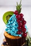 Schokoladenkleine kuchen cupcakes Kleine Kuchen mit Beeren, Frucht, strawb Stockfoto