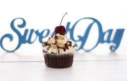 Schokoladenkleiner kuchen Lizenzfreies Stockbild