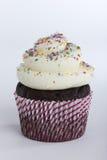 Schokoladenkleiner kuchen mit besprüht Lizenzfreies Stockfoto