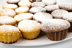 Schokoladenkleiner kuchen mit Puderzucker- und Schokoladensoße Lizenzfreie Stockfotografie