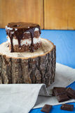 Schokoladenkuchen auf dem Stumpf Lizenzfreie Stockbilder