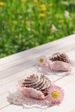 Schokoladenkuchen auf der Tabelle im Garten Lizenzfreies Stockfoto