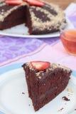 Schokoladenkuchen des strengen Vegetariers Stockbild