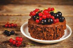 Schokoladenkuchen Mini mit den roten und Schwarzen Johannisbeeren Lizenzfreie Stockbilder