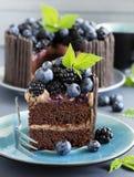 Schokoladenkuchen mit Blaubeere Stockfotos