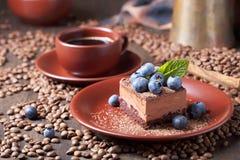 Schokoladenkuchen mit Blaubeeren und Minze lizenzfreie stockfotografie
