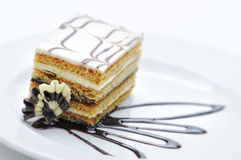 Schokoladenkuchen mit der Schokolade, die auf weißer Platte, Süßspeise, Konditorei, Shop, Kakaopulver toping ist Lizenzfreies Stockbild