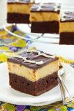 Schokoladenkuchen mit Erdnüssen stockbilder