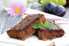Schokoladenkuchen mit Minze Lizenzfreie Stockfotos
