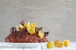 Schokoladenkuchen mit Physalis Lizenzfreies Stockfoto