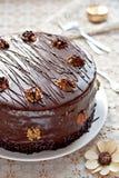 Schokoladenkuchen mit Walnüssen Stockbilder