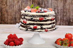 Schokoladenkuchen mit weißer Creme und frischen Früchten Lizenzfreie Stockfotos